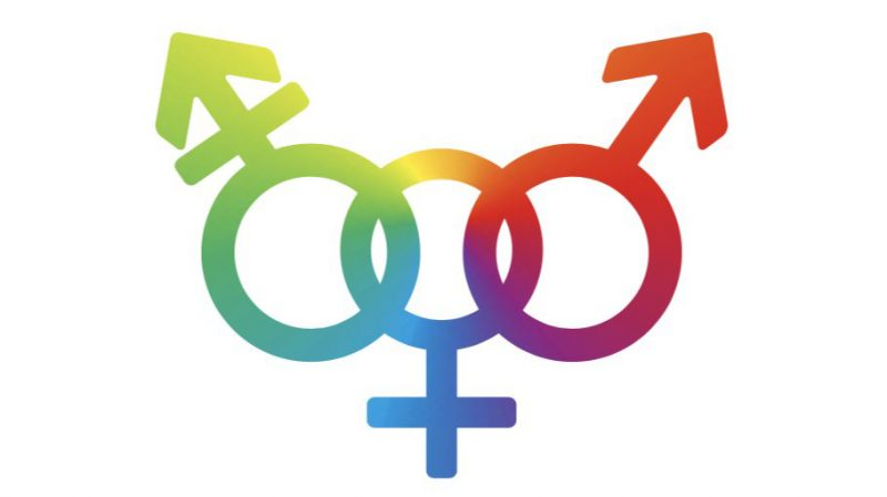 Gender_YourGuide